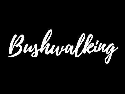 Bushwalking Forrest Otway Ranges