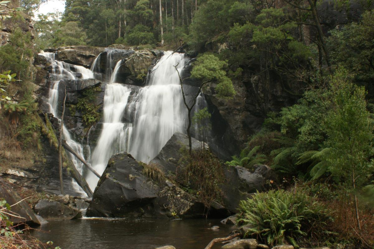 Stevenson's Falls
