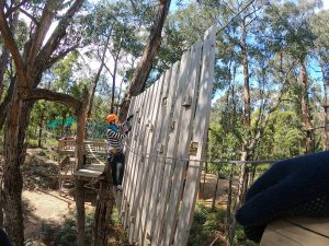 Trees Adventure Yeodene High Ropes Course