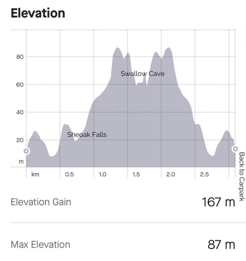 Sheoak Falls and Swallow Cave vertical profile