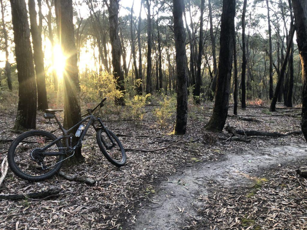 Yaugher Trails Forrest Bike Friendly Accommodation